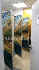необычные перегородки для туалетных кабинок фото