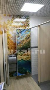 туалетные перегородки дизайнерские на заказ на автозаправку